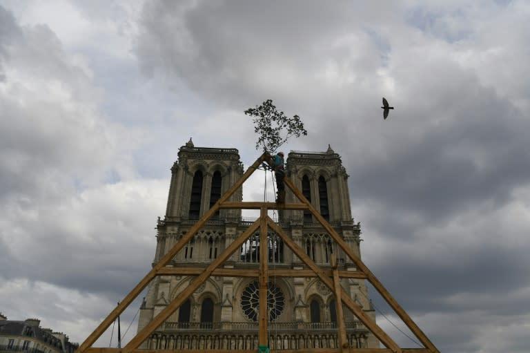 Paris Notre-Dame repairs