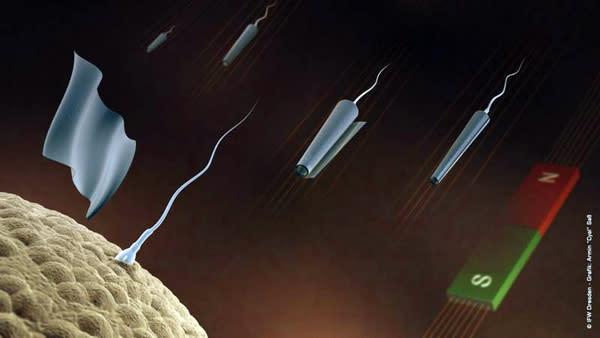Spermbots: Mikroröhrchen mit Spermiumantrieb und Magnetfeld-Fernsteuerung