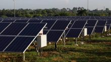 Solar tenders, auctions slowing down in India: Report