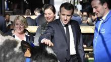 Macron visits French farm fair amid rural anger, decline