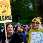 First they marched, then they mobilized: how the resistance swayed the midterms