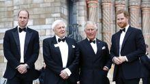 El presunto plan del príncipe Carlos y Guillermo para echar a Harry de la monarquía