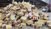 More than 5,000 pets found dead in cardboard boxes at Chinese depot after being stranded for a week