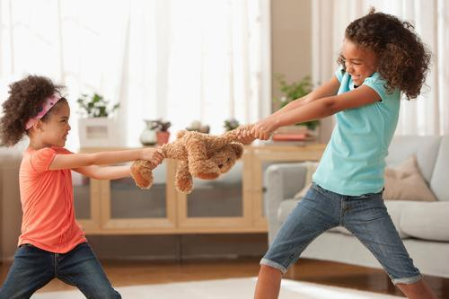 Toys For Siblings : How to deal with fighting siblings