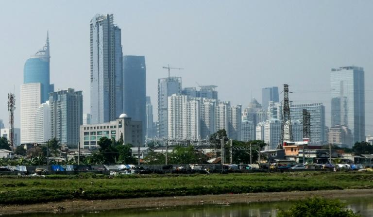 Indonesia wants to move its capital from congested Jakarta to a new purpose-built city in east Kalimantan (AFP Photo/BAY ISMOYO)