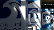 ADNOC infrastructure deal backed by $8 billion bridge financing - sources