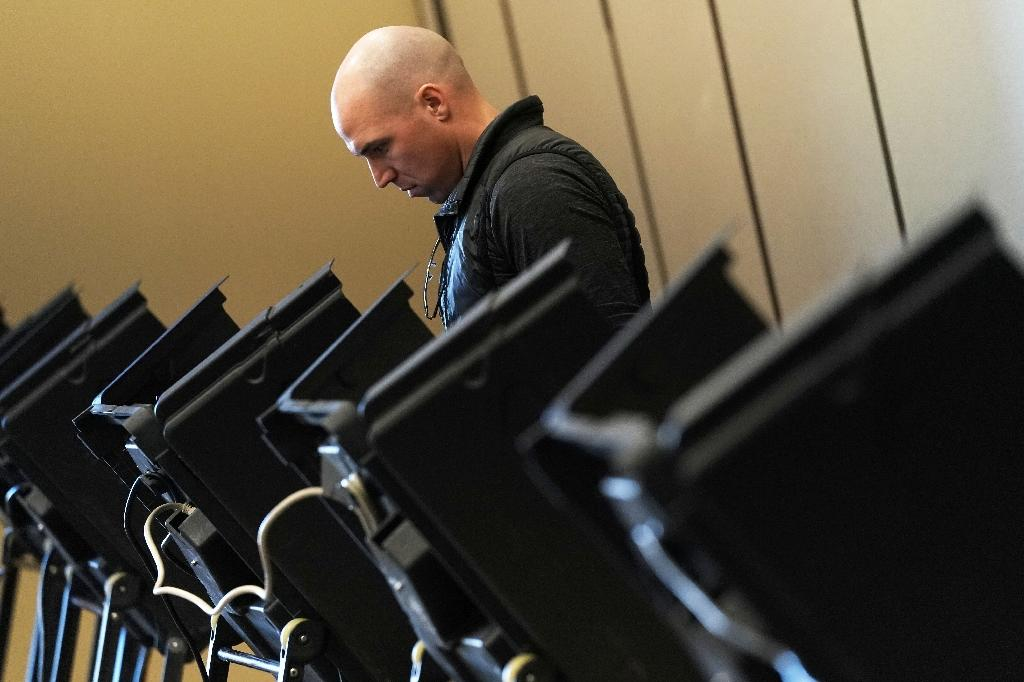 High voter turnout in the 2018 US midterm elections came amid record digital ad spending (AFP Photo/ALEX WONG)