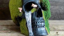 Calaveras con bonsáis que dan muy mal rollo para adornar la casa