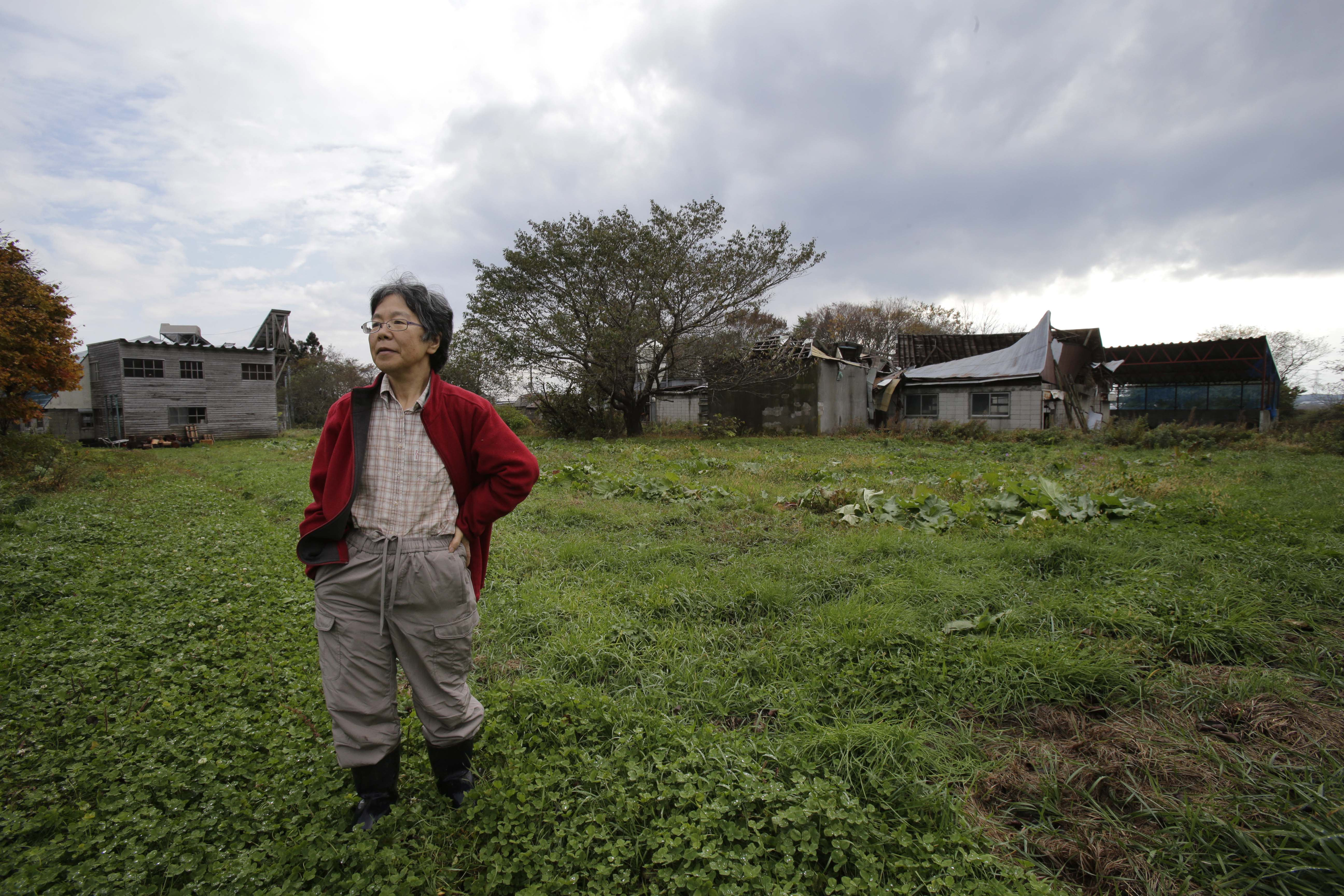 """In this Nov. 7, 2012 photo, farmer Keiko Kikukawa stands in her field in Rokasho village, Aomori Prefecture, northern Japan. By hosting a high-tech facility that would convert spent fuel into a plutonium-uranium mix designed for the next generation of reactors, Rokkasho was supposed to provide fuel while minimizing nuclear waste storage problems. Those ambitions are falling apart because years of attempts to build a """"fast breeder"""" reactor, which would use the reprocessed fuel, appear to be ending in failure. """"It's so unfair that Rokkasho is stuck with the nuclear garbage from all over Japan,"""" Kikukawa said. """"And it's not going to go away even if the Rokkasho plant stops immediately. We're dumping it all onto our offsprings to take care of. It's so irresponsible."""" (AP Photo/Koji Sasahara)"""