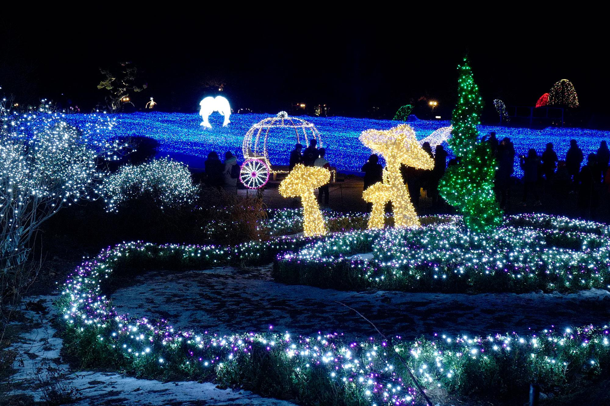 <p>Visitors look at decorated Christmas trees at the Garden of Morning Calm in Gapyeong, South Korea on Dec. 19, 2016. The Garden of Morning Calm was founded by professor Sang-kyung Han and it opened on May 11,1996 as a private garden. (Photo: Jeon Heon-Kyun/EPA) </p>