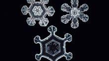 Un inventor consigue inmortalizar copos de nieve como nunca antes se habían visto