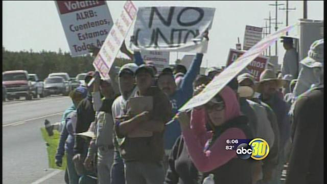 Farm workers in Fresno Co push for union contract vote