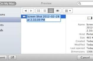 Mountain Lion developer preview changes file renaming options