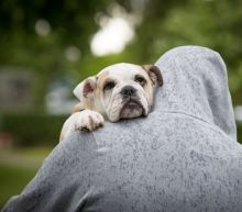 If you're single, get a dog — it could make you live longer