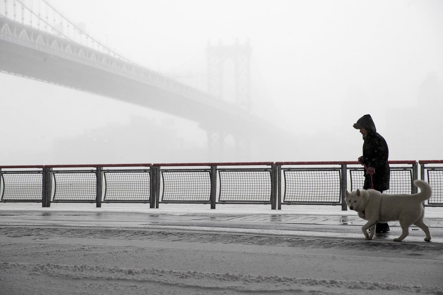 <p>A man walks his dog with the Manhattan bridge, left, during a snowstorm, Tuesday, March 14, 2017, in New York. (Mary Altaffer/AP) </p>