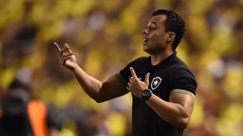 Botafogo 'sobrevive' sequência fora e tem jogos no Nilton pela classificação