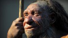 Neandertaler-Gene erhöhen Risiko für schweren Corona-Verlauf