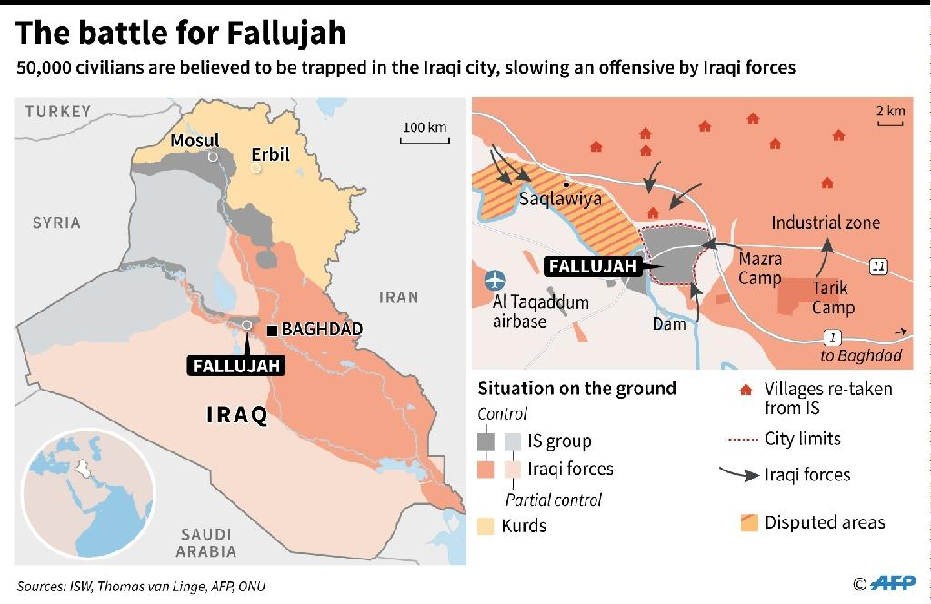 The battle for Fallujah (AFP Photo/)