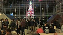 Winter Meetings Journal, Day 1: Welcome to the Biodome