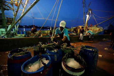 Fishermen download the catch at Samut Sakhon port in Thailand November 22, 2016. Picture taken November 22, 2016. REUTERS/Jorge Silva