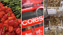 Coles customer's tour of 'must visit' store explodes online
