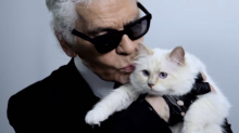Choupette: How Karl Lagerfield's cat became the most famous feline in the world