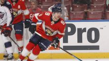 Florida Panthers Clinch Playoff Berth in Successful Month of April