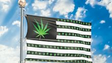 Nach Canopy Growth, Aurora Cannabis und Aphria: der nächste US-Cannabis-Kandidat