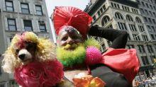 Encuentran muerto en el mar a la Miss Colombia barbuda
