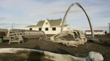 Inupiat town mourns hunters killed as they towed whale home