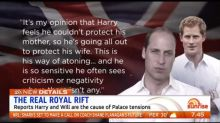 Are Harry and Will the cause of Palace tensions?