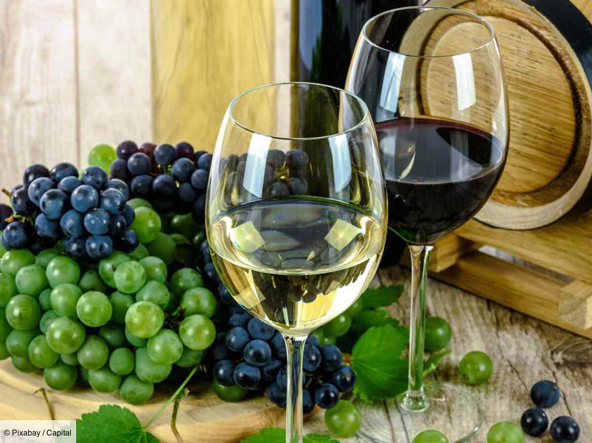 Covid 19 : les charges sociales patronales des viticulteurs vont