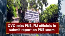 CVC asks PNB, FM officials to submit report on PNB scam