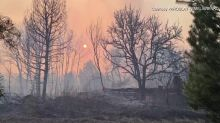 Forest fire rips through Chernobyl
