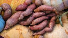Grow to eat: sweet potatoes are easy to grow in a warm spot