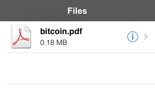 Downloads for iOS is a decent file manager with limitations