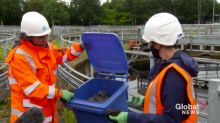 Coronavirus: How the use of wet wipes is blocking sewers and leading to challenges at treatment plants