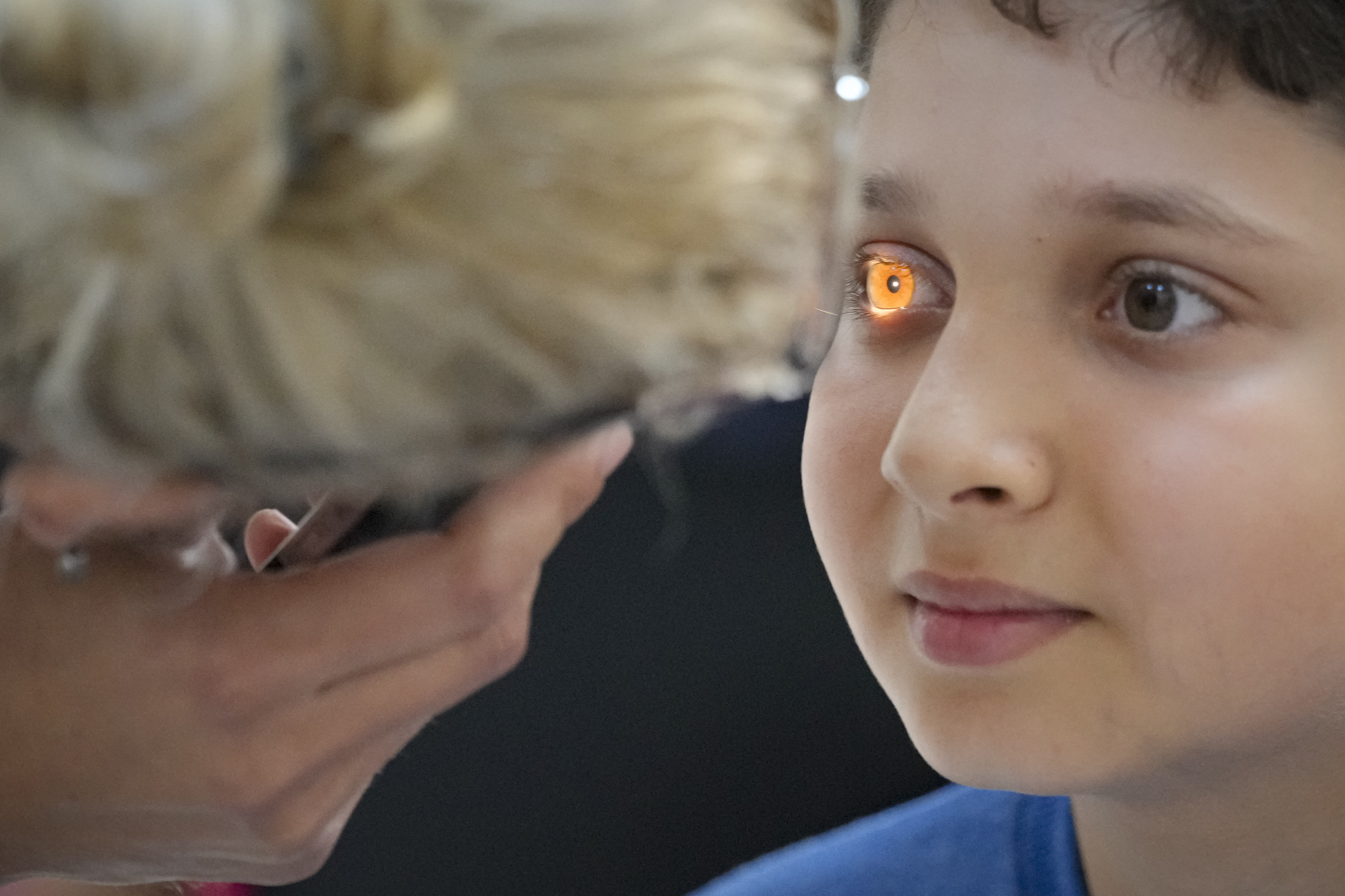 UN adopts first resolution on vision, aims to help 1 billion