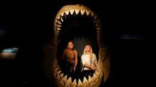Malta tratará de recuperar diente de megalodón que Sir David Attenborough le regaló a príncipe Jorge