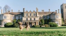 Why this Cotswold hotel is a top spot for dog-lovers
