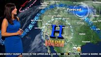 Amber Lee's Weather Forecast (March 29)