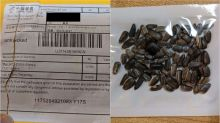 Officials think mysterious packages from China containing seeds are part of an online scam
