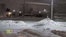 A fresh layer of wet snow falls overnight in New Brunswick