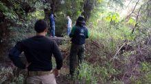 Violencia en México: encuentran restos de 59 personas en fosas de Guanajuato, uno de los mayores hallazgos en el estado más violento del país