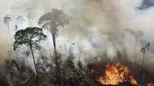 Pequena redução nos incêndios na Amazônia em agosto