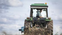 UK launches export campaign to help farmers 'go global' post-Brexit