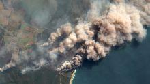 Los incendios de Australia son solo el inicio, la situación irá a peor