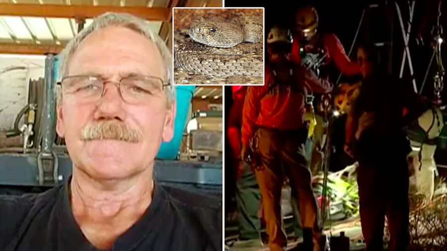Man fights off snakes while trapped in mine shaft for two days
