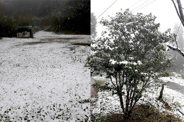 烏來山區降下白雪,引發新一波賞雪潮 (圖/新店警好讚)