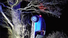 Suspected drunk driver arrested after car lands upside down in a tree